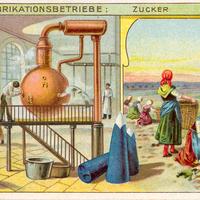 6 Aecht-Franck Serie-Fabrikationsbetrieb Zucker