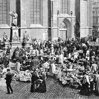 Hannover_Markt-Szene-beim-Luther-Denkmal,-Poststempel-1908
